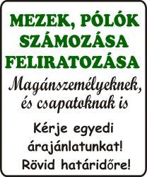 A SZÁMOZÁS